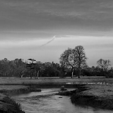 River Axe Axminster by widdy170