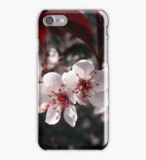 Flowering Weigela iPhone Case/Skin