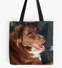 Basking in the afternoon sun Tote Bag