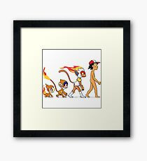 the real evolution Framed Print
