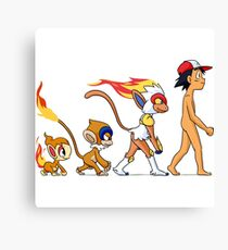 the real evolution Canvas Print