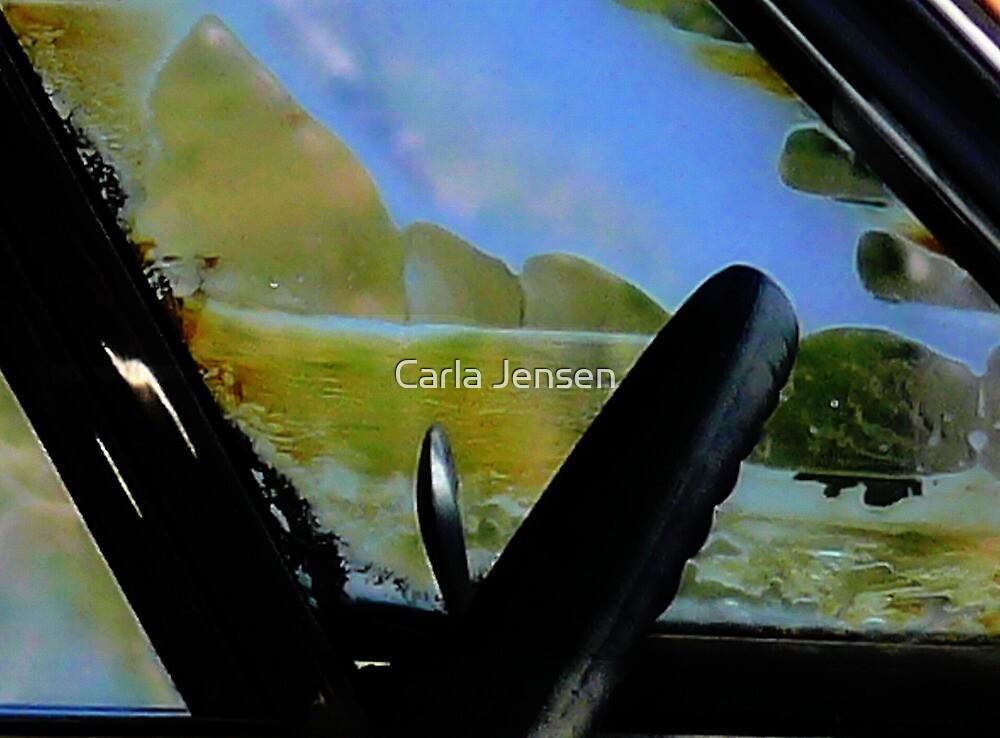 Memories Imprinted For Life  ( BoneYard Series ) by Carla Jensen