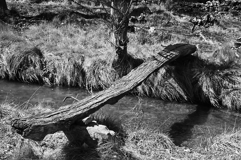 complicated bridge, Miravete, Maestrazgo, Aragon, Spain by Andrew Jones