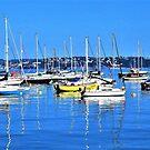 Brixham Harbour by Lesliebc