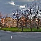 Mertz Library - Botanical - Bronx, New York © 2009 by Jack McCabe