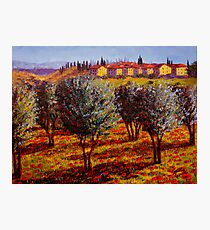 Tuscany Village Above the Olive Grove Photographic Print
