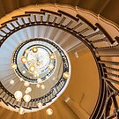 Spiral by John Velocci