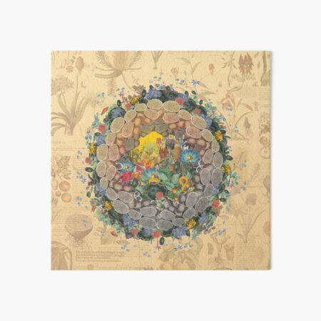 Botanic Globe Art Board Print