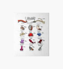 Know Your Cephalopods! Art Board Print