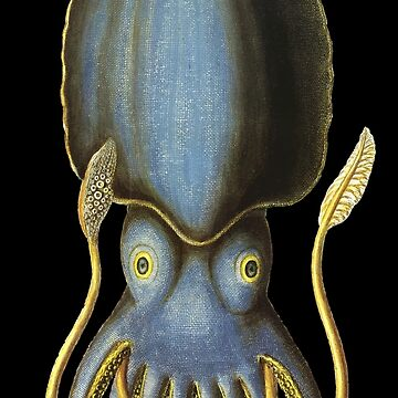 Vintage Cuttlefish illustration by monsterplanet