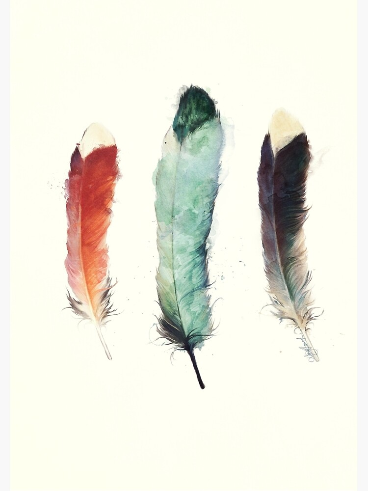 Feathers by AmyHamilton