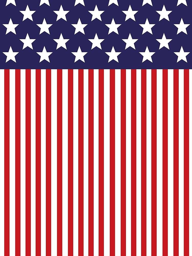 Stylized American Flag by Chocodole
