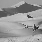 Camel Watch by David Clark