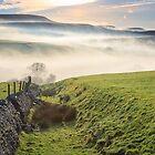 Derbyshire Peak District on a misty morning by Chris Warham
