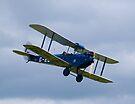 De Havilland DH60 Gipsy Moth Military Trainer by Nigel Bangert