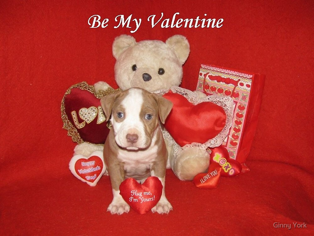 Be My Valentine by Ginny York