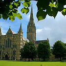 Salisbury Cathedral by John Dalkin