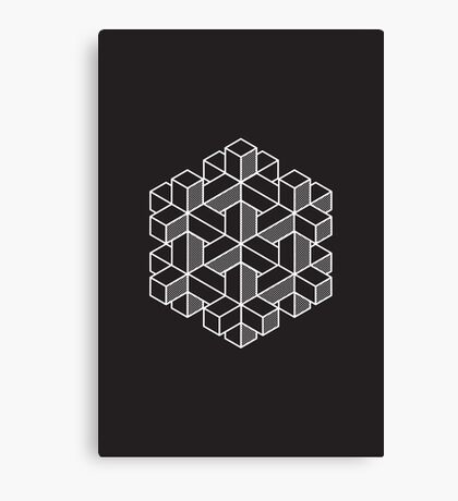Impossible Shapes: Hexagon Canvas Print