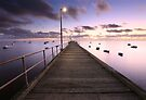 Pre-dawn Glow, Mornington Peninsula, Australia by Michael Boniwell