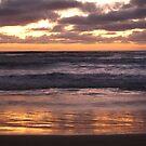 Golden Sunset at Venus Bay by Kasia  Kotlarska