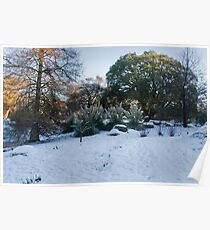 Tropical Snows Poster