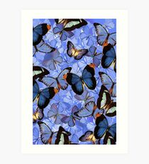 Composition With Echoed Butterflies #3 Art Print