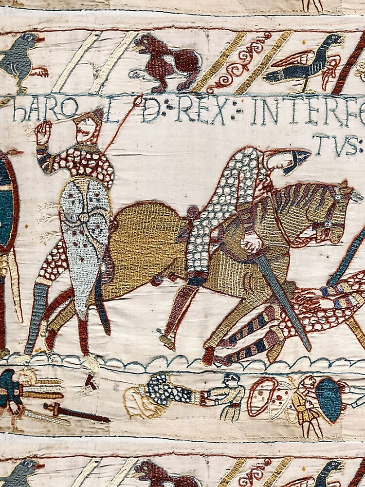 Bayeux Tapestry. King Harold is killed. Arrow in eye. by TOMSREDBUBBLE