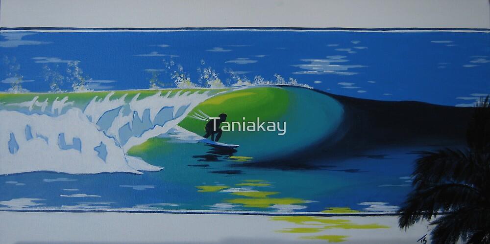 """Barrel"" Endless Summer series by Taniakay"