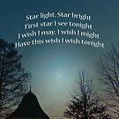 Star light, Star bright by FrankieCat