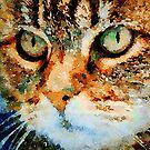 Tabby Cat by Leon Woods