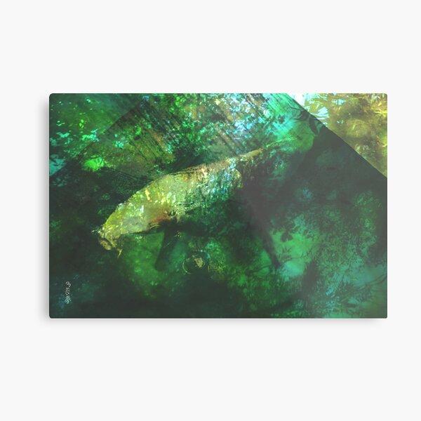 rainforest waters Metal Print