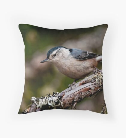 White Breasted Nuthatch - Ottawa, Ontario Throw Pillow