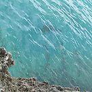 Rocky Shores Grand Cayman Island by BeachBumFamily