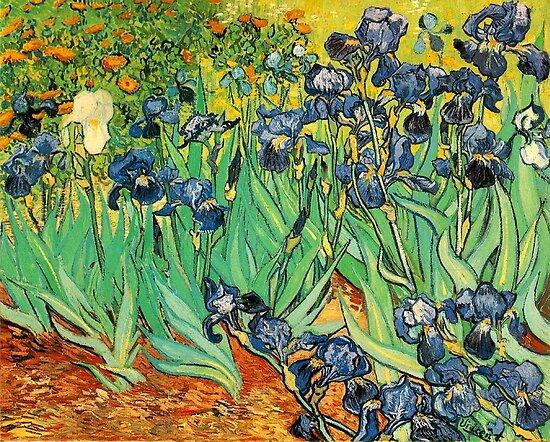 Irises, Vincent van Gogh by naturematters