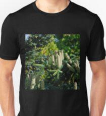 Bumper Cone Crop T-Shirt