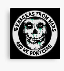 We don't care  Canvas Print