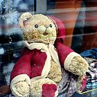 How much is that teddy in the window by missmoneypenny