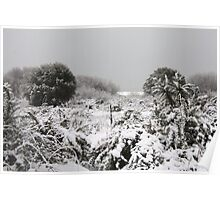 snow bushes Poster
