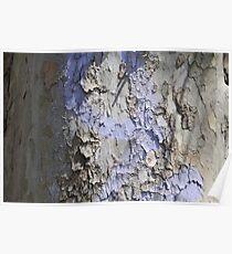 Blue Bark Poster