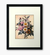 vintage botanical art, beautiful yellow daisy and pink rose flowers. Framed Print