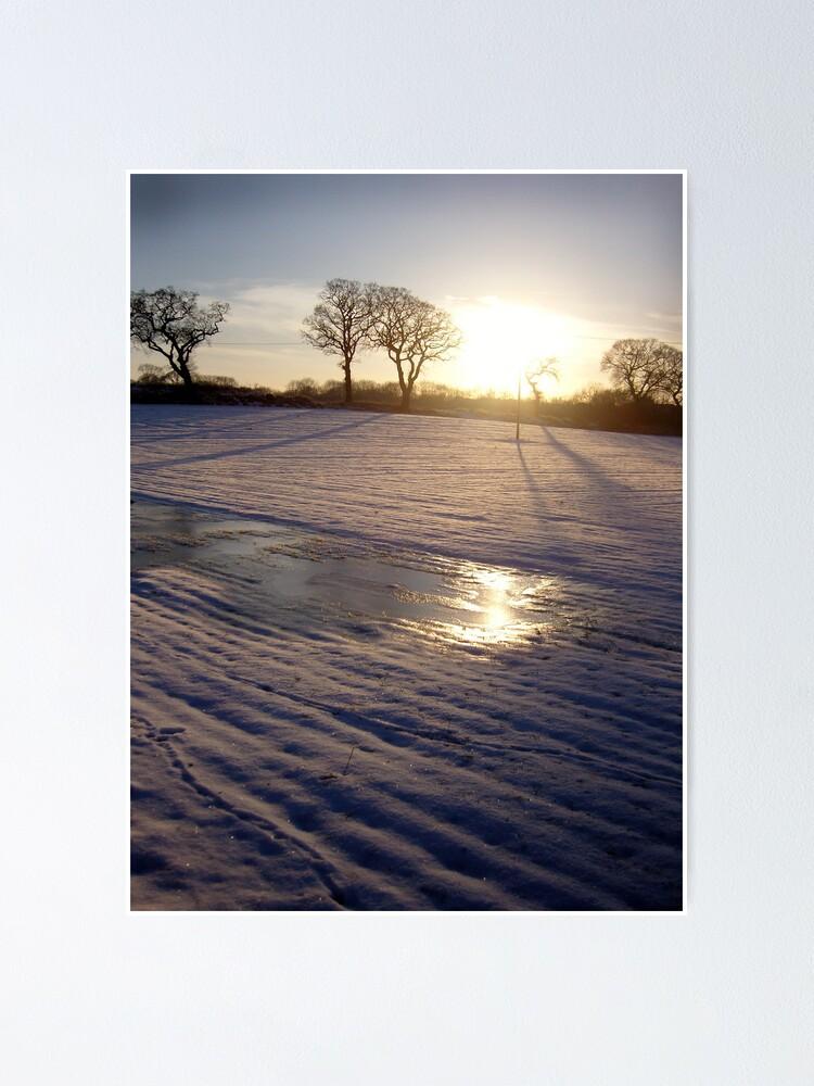 Alternate view of Dalmeny Winter Sun Poster