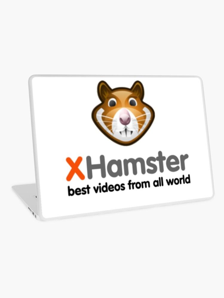 hammsterx najnowsze filmy indyjskie xxx