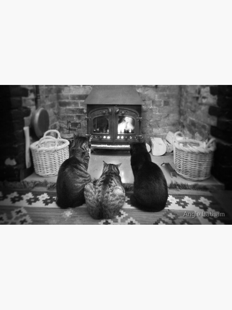 Fireside Heaven by AngelaBarnett