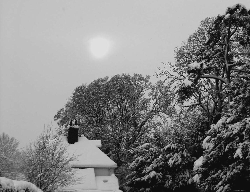 Snow scene by Caroline Anderson