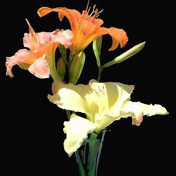 Three Lilies by MarthaMedford