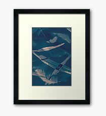 Feathers floating in the air Framed Print
