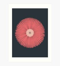 Depth flower Art Print
