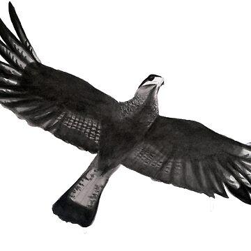 Carancho, Caracara plancus, Bird Eagle flying, Oriental Zen Minimalism, Sumi e Ink sumie, nature, feather, black, white, gray, animals, outdoors, wildlife, minimal, abstract, zen, meditative by arteivanna