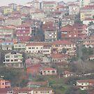 Houses in Paşabahçe,Istanbul by rasim1