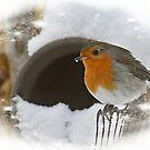 Like a Christmas card by Bente Agerup